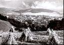 Blick vom Nordhang im Jahr 1969